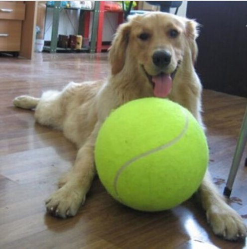 24 CM Giant Tennis Ball For