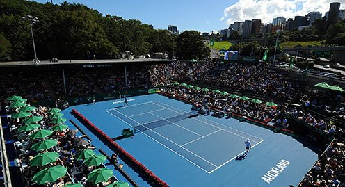 ATP World Tour 250 Tennis