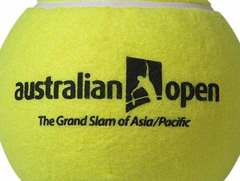 The 2015 Australian Open