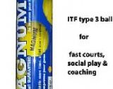 Tennis balls, for fast courts,coaching and social play