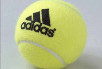 Buy tennis Cricket balls Online