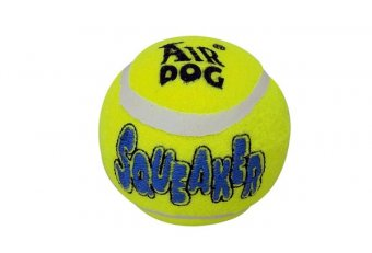 Dog Squeaker tennis ball