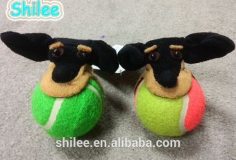 Pet tennis ball Dog